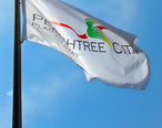 Official_Peachtree_City_flag_in_Peachtree_City__Georgia.jpg