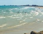 Beach_in_Cape_Canaveral__Florida.jpg