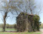 Duplin-county-nc-tobacco-barn-1040875.jpg