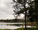 Lake_Tuskegee.JPG