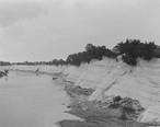 White_Bluff_at_Demopolis_in_1903.jpg