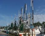 Shrimpboats.JPG