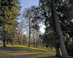 Tacoma__WA_-_Wright_Park_01.jpg