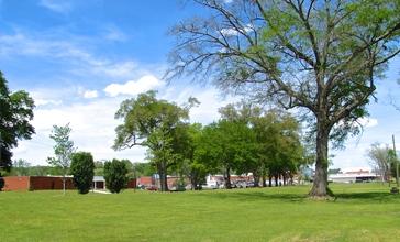 Trion-park-ga.jpg