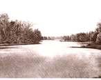 Estuary_of_Chesapeake_Bay_Plate_VII_WBClark_1897.jpg