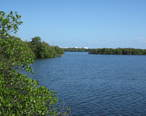 Lake_Worth_Lagoon.jpg