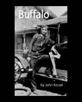 Buffalo by John Kessel