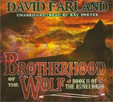 Fantasy Audiobook - Brotherhood of the Wolf by David Farland