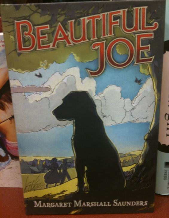 Beautiful Joe COVER