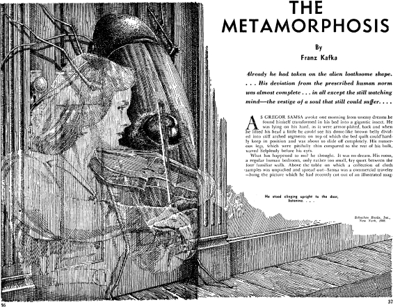 The Metamorphosis by Franz Kafka - illustrated by either Finlay or Lawrence