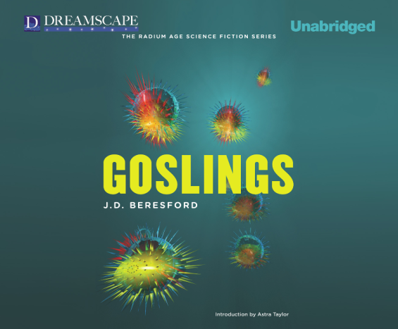 Dreamscape Audiobooks Goslings by J.D. Beresford
