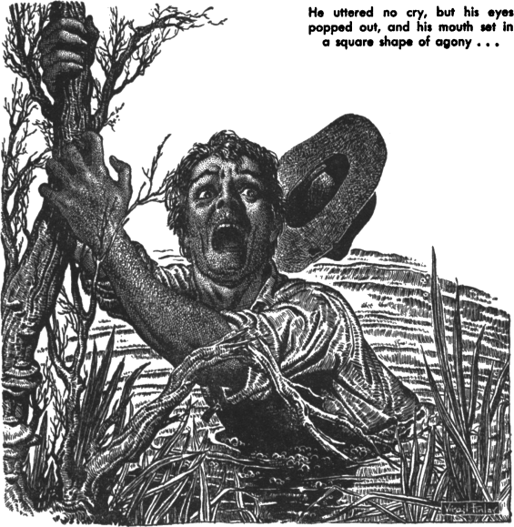 Fishhead by Irvin S. Cobb - illustrated by Virgil Finlay