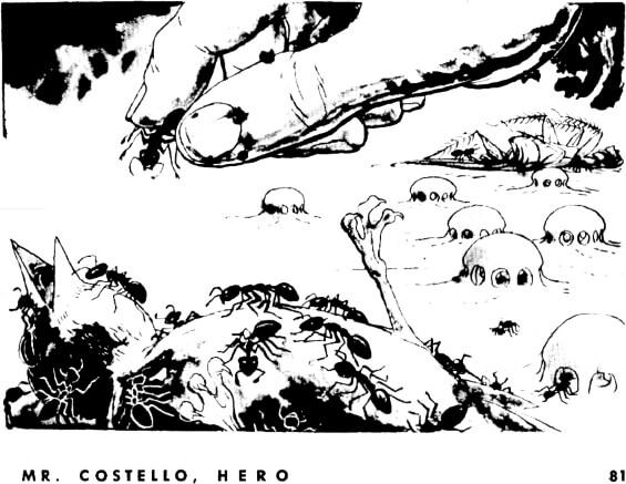 MrCostelloHero081
