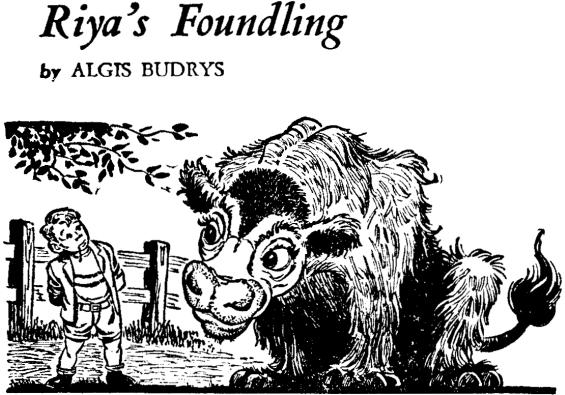 Riya's Foundling by Algis Budrys