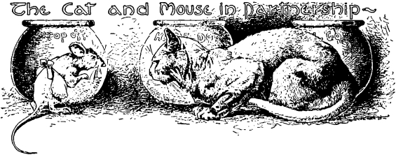 The Companionship Of The Cat And The Mouse