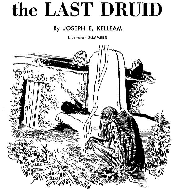 The Last Druid by Joseph E. Kelleam