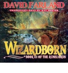 Fantasy Audiobook - Wizardborn by David Farland