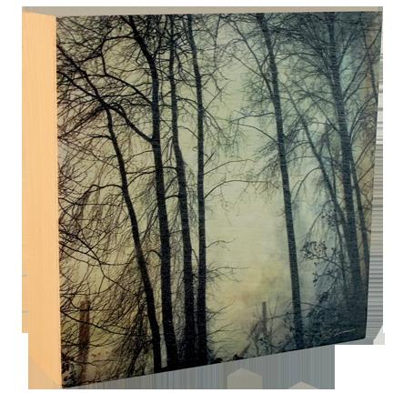 Wood Block - Foggy Fraser