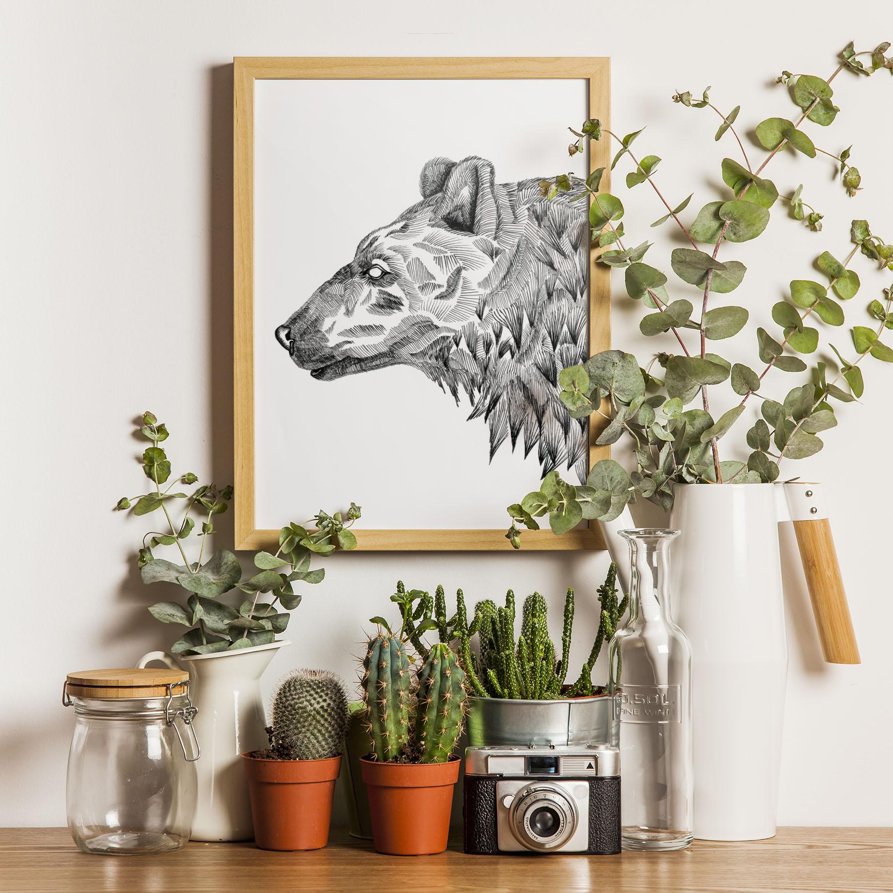 Bear 11x14 Print