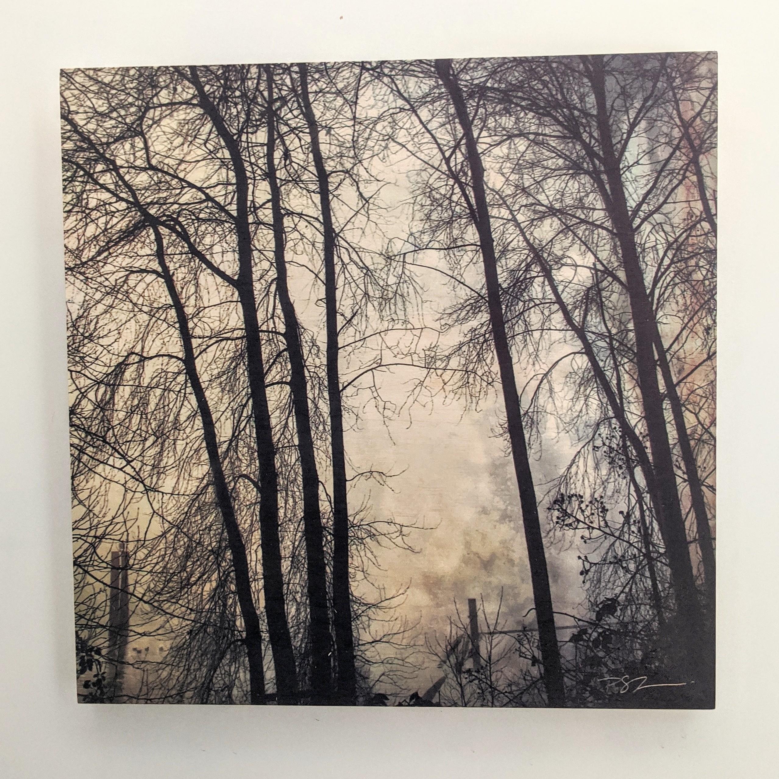 Wood Art Panel - Foggy Fraser