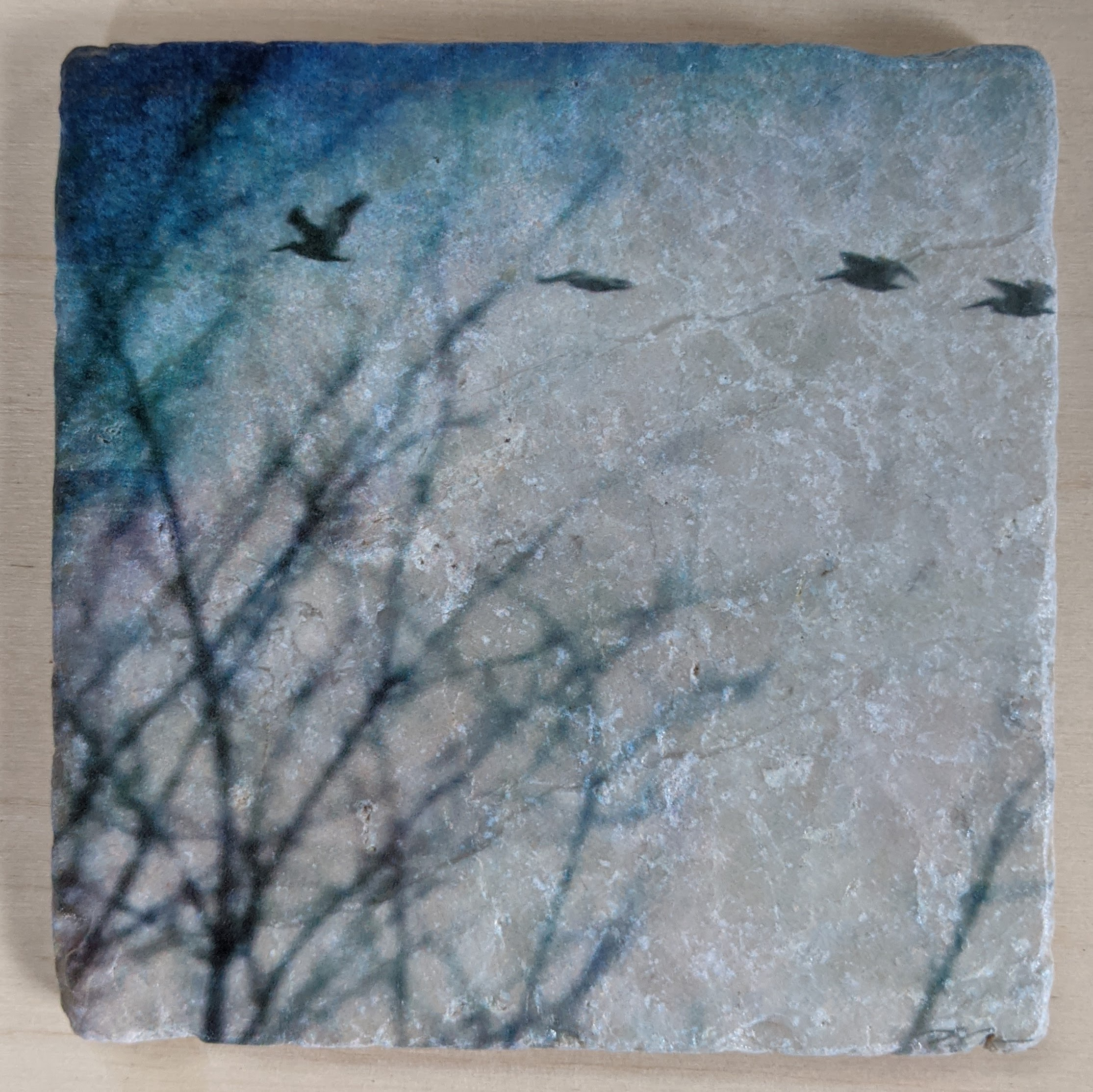 Foggy Birds - Marble Art Coaster