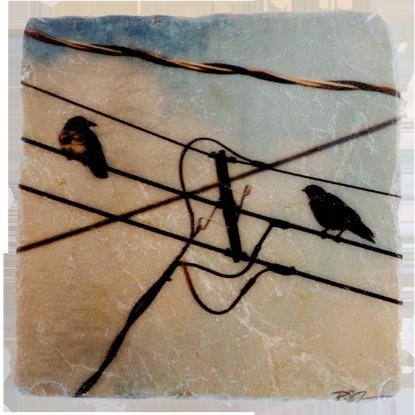 Marble Coaster - Conundrum