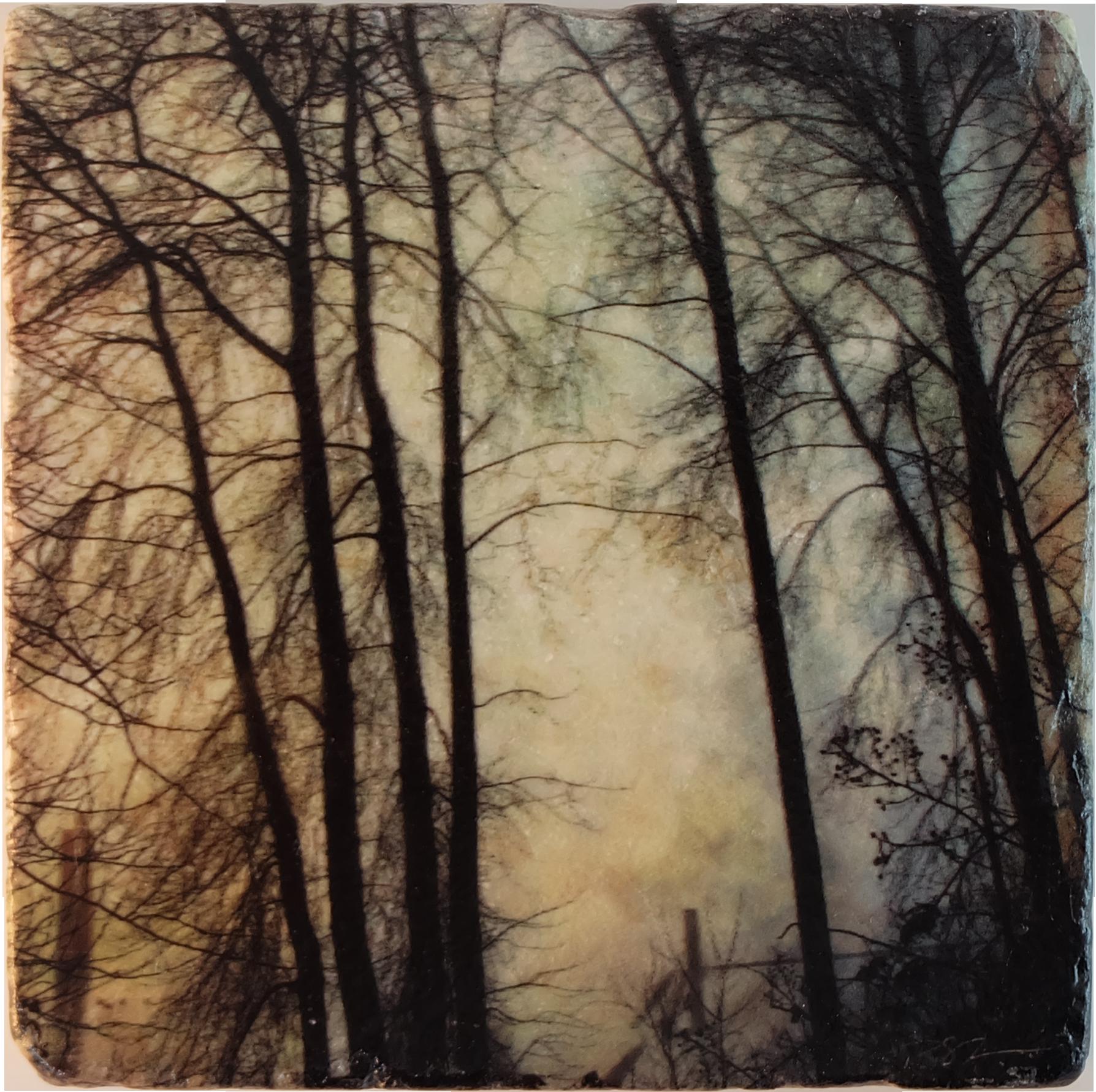 Marble Art Coaster - Foggy Fraser