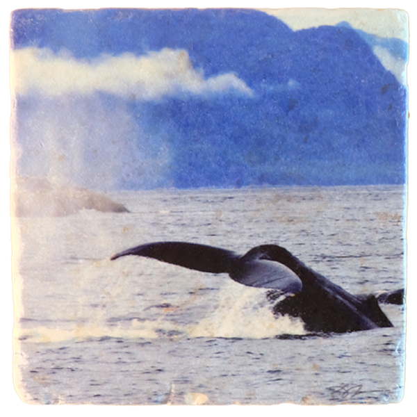 Marble Art Coaster - Whale
