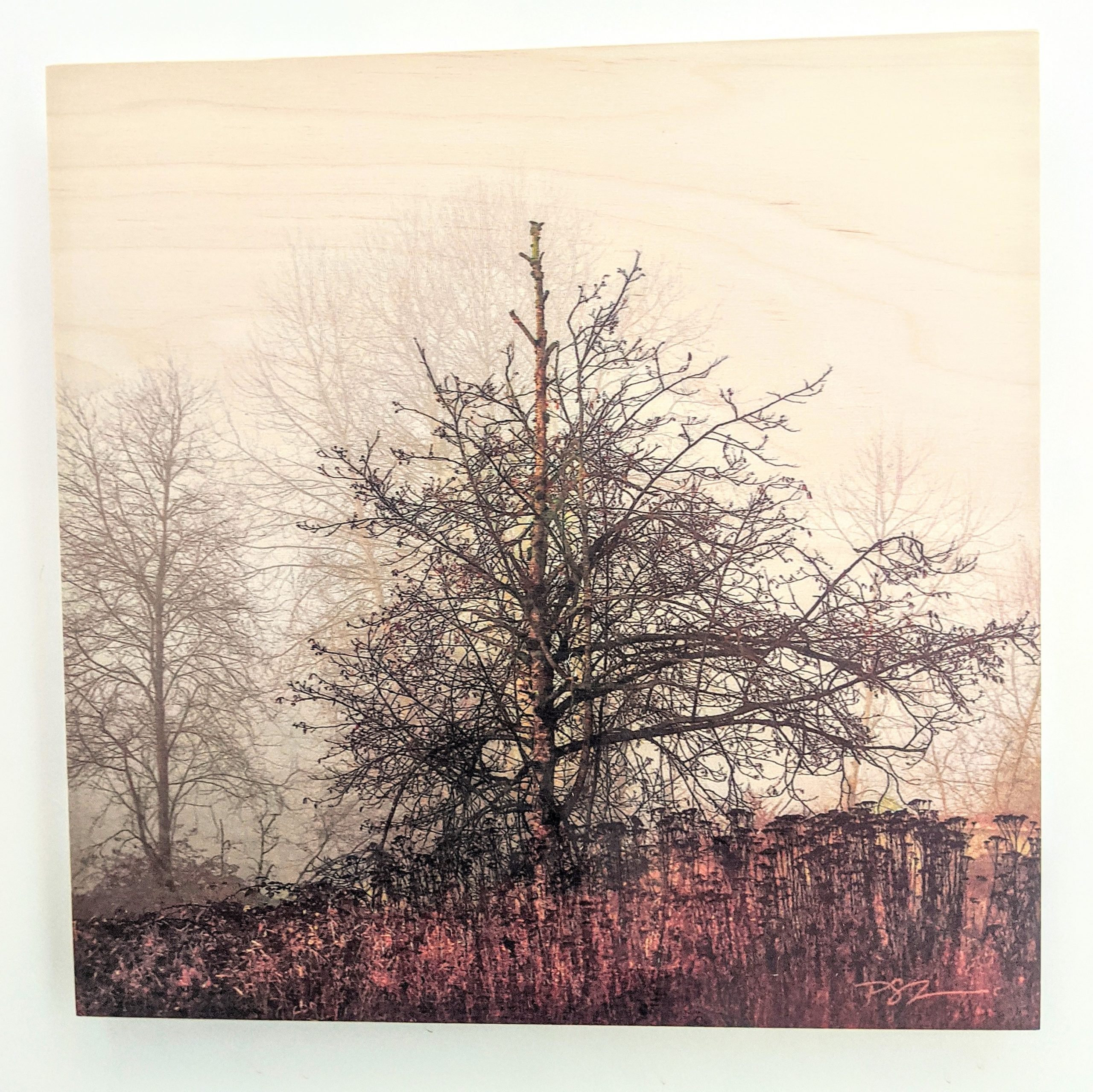 Wood Art Panel - Out of the Fog