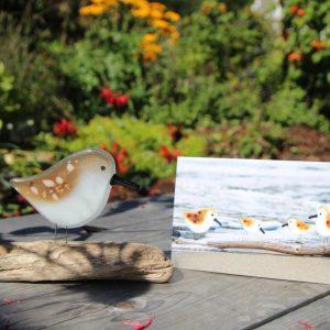 sandpiper ornament with card