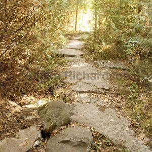 Spirit Path