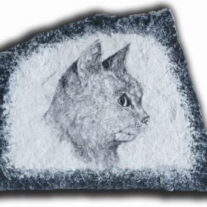 cat profile drawing on stone