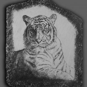 Tiger drawing on stone