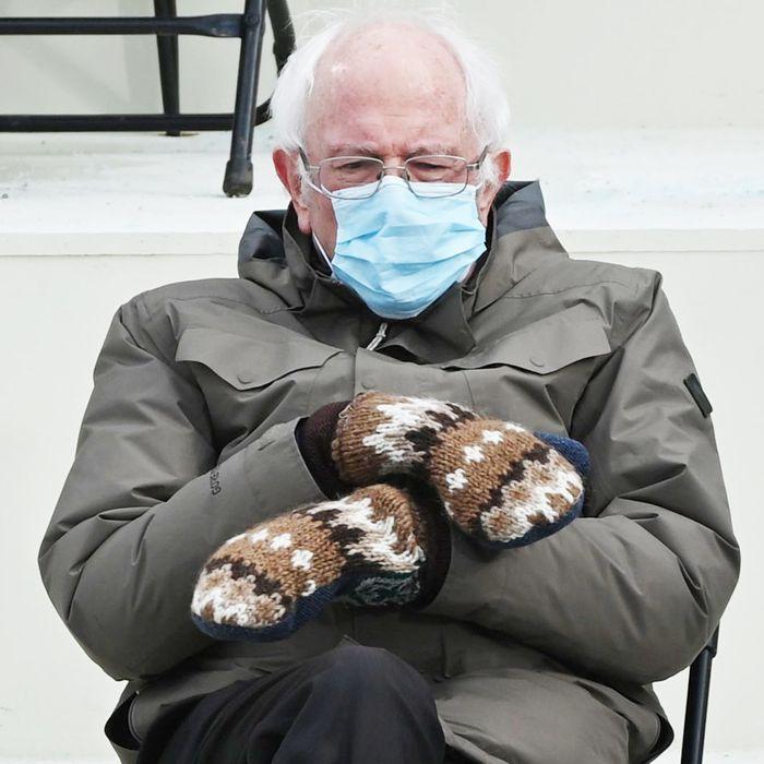 Alpaca Yarn, Bernie Sanders Mittens