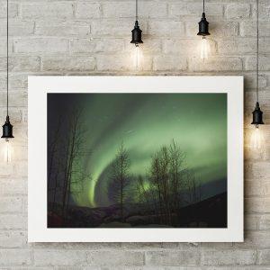 Aurora Trails