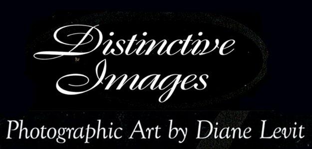Distinctive Images