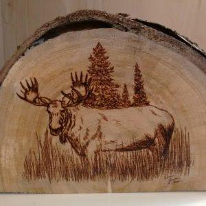 Moose on natural live edge wood slice
