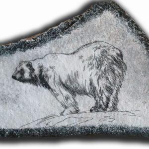 polar bear drawing on stone
