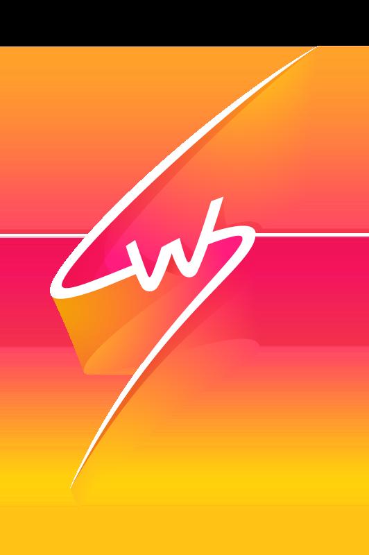 StadiumWise Logo