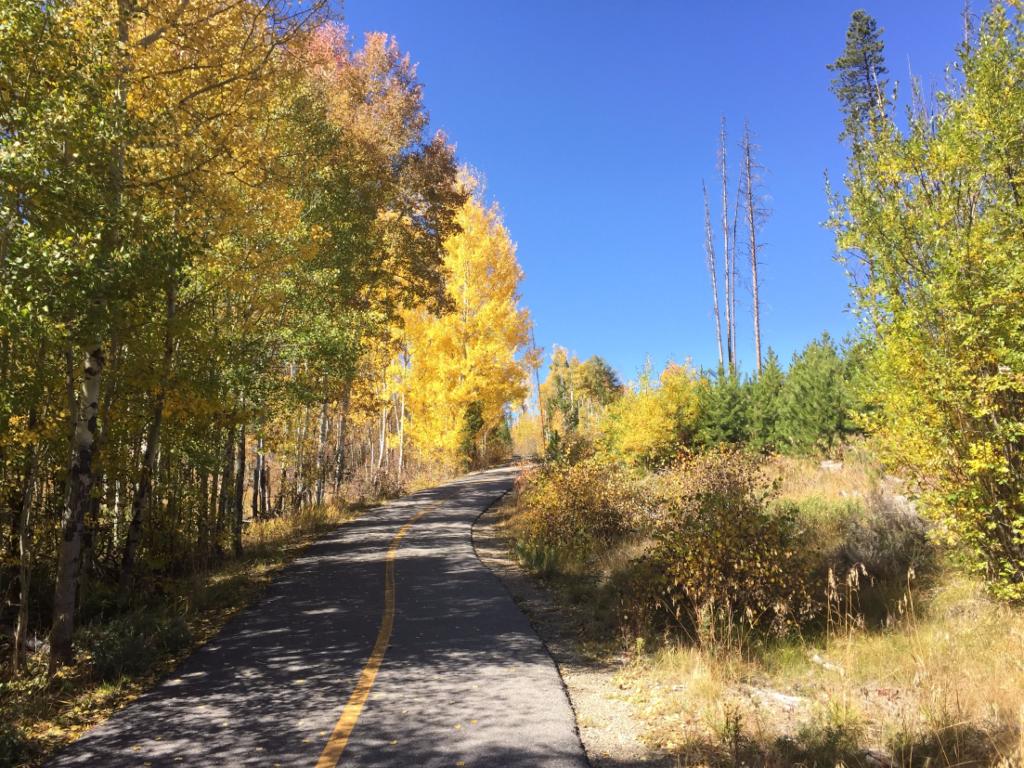 Frisco to Copper Path in Autumn