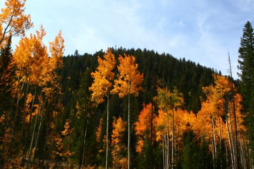 keystone-in-fall