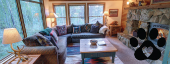 Dog Friendly Private Home Rental at Keystone Resort CO