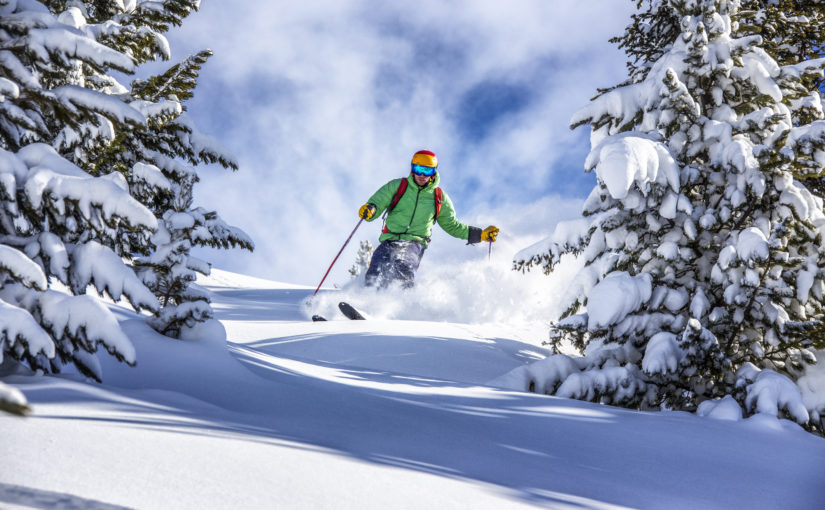 A skier plows through fresh snow and trees