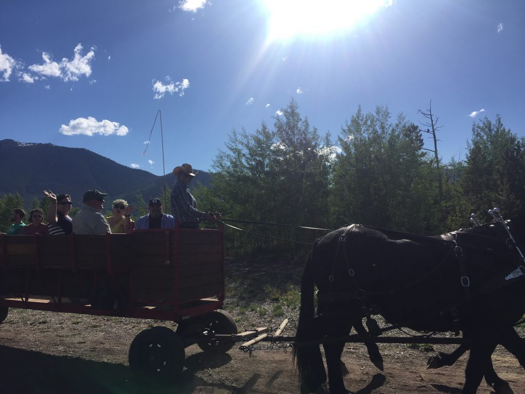 Summer chuckwagon rides