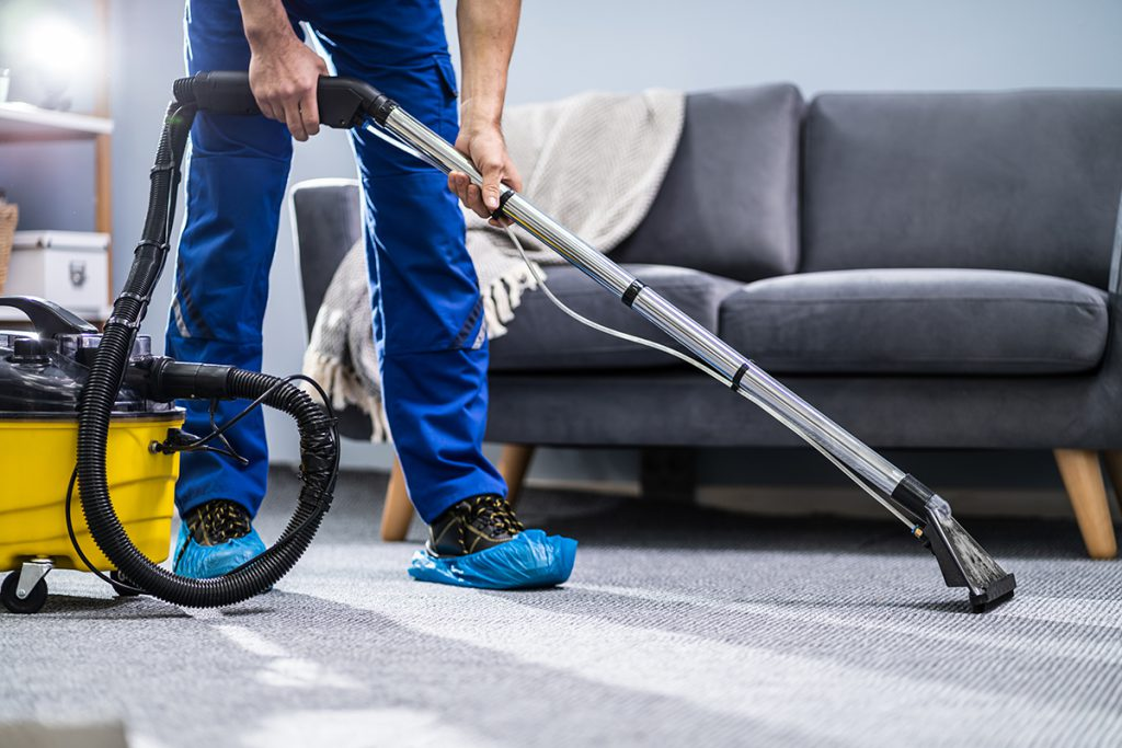 Carpet Cleaning a Home Colorado