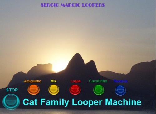 Sergio Marcio - Cat Family Looper Machine