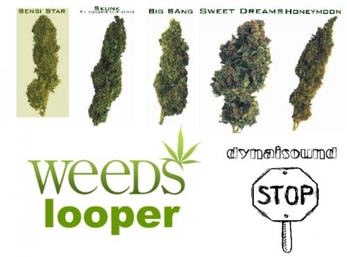 Dynaisound - Weeds Looper