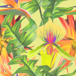 tedeex_design_tropical-design