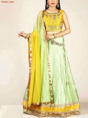 Fancy Choli with embroidery patch in plan lehengha - Concept Design