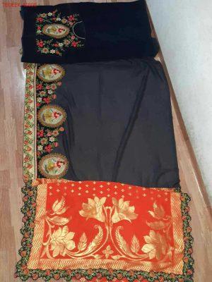 figure concept half-half  saree
